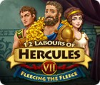 Žaidimas 12 Labours of Hercules VII: Fleecing the Fleece