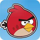 Žaidimas Angry Birds Bad Pigs
