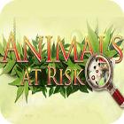 Žaidimas Animals At Risk