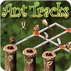 Žaidimas Ant Tracks