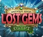 Žaidimas Antique Shop: Lost Gems Egypt