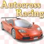 Žaidimas Autocross Racing