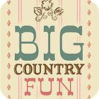 Žaidimas Big Country Fun