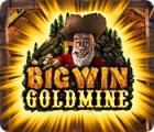 Žaidimas Big Win Goldmine