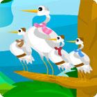 Žaidimas Birds Of A Feather