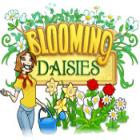 Žaidimas Blooming Daisies