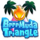 Žaidimas Brrrmuda Triangle