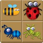 Žaidimas Bug Box