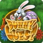 Žaidimas Bunny Quest