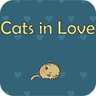 Žaidimas Cats In Love
