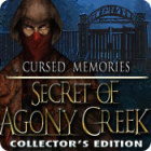 Žaidimas Cursed Memories: The Secret of Agony Creek Collector's Edition