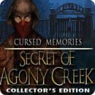 Žaidimas Cursed Memories: The Secret of Agony Creek Collector's Edition