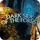 Žaidimas Dark Side Of The Forest