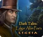 Žaidimas Dark Tales: Edgar Allan Poe's Ligeia