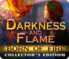 Žaidimas Darkness and Flame: Born of Fire Collector's Edition