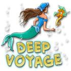 Žaidimas Deep Voyage