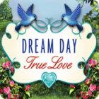 Žaidimas Dream Day True Love