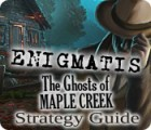 Žaidimas Enigmatis: The Ghosts of Maple Creek Strategy Guide