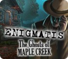 Žaidimas Enigmatis: The Ghosts of Maple Creek