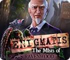 Žaidimas Enigmatis: The Mists of Ravenwood