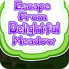 Žaidimas Escape From Delightful Meadow