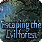 Žaidimas Escaping Evil Forest