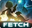 Žaidimas Fetch