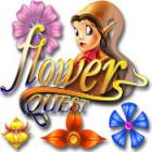 Žaidimas Flower Quest