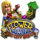 Žaidimas Flower Shop: Big City Break