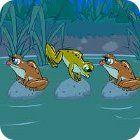 Žaidimas Frog Tag