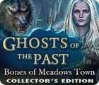 Žaidimas Ghosts of the Past: Bones of Meadows Town Collector's Edition