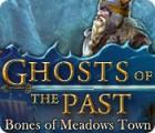 Žaidimas Ghosts of the Past: Bones of Meadows Town
