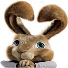 Žaidimas Hop: Easter Bunny Coloring