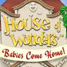 Žaidimas House of Wonders: Babies Come Home