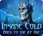 Žaidimas Insane Cold: Back to the Ice Age