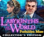 Žaidimas Labyrinths of the World: Forbidden Muse Collector's Edition