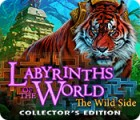Žaidimas Labyrinths of the World: The Wild Side Collector's Edition