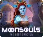 Žaidimas Moonsouls: The Lost Sanctum