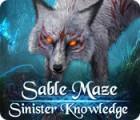 Žaidimas Sable Maze: Sinister Knowledge